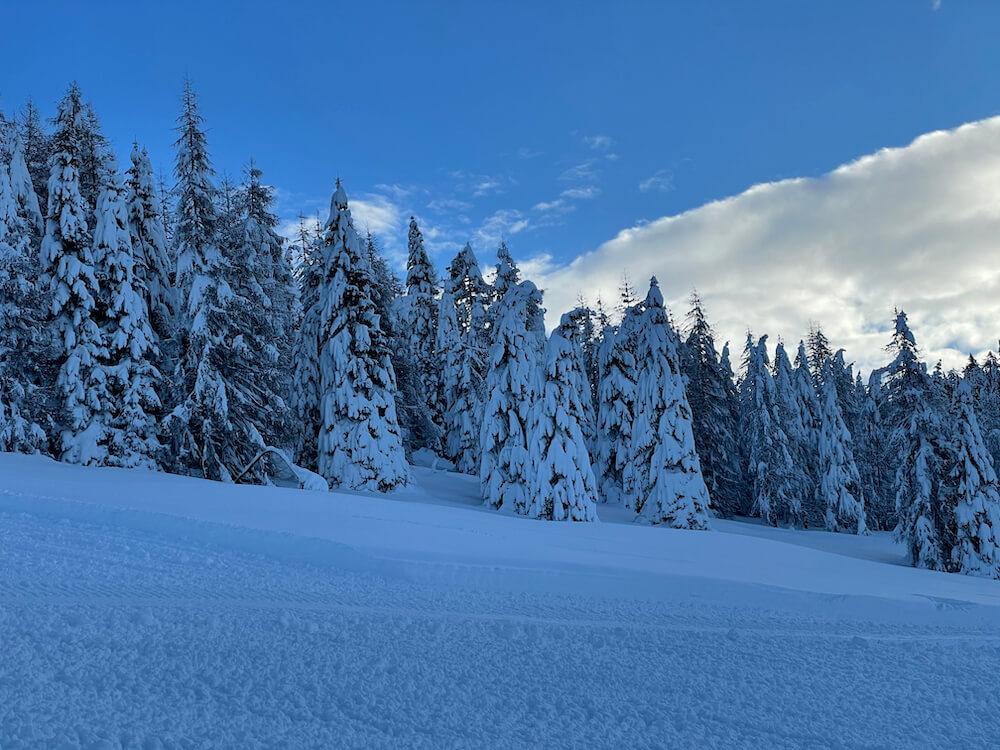 neve dicembre